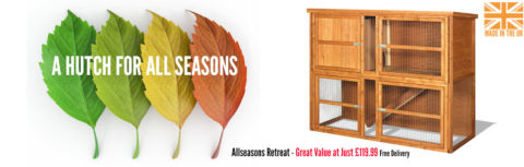 All Seasons Retreat Double Rabbit Hutch from Home and Roost