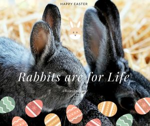 Rabbits are for Life