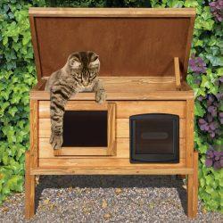 Cat_Shelter_02