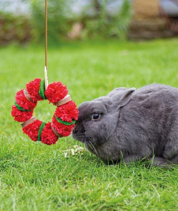 Christmas wreath chew guinea pig